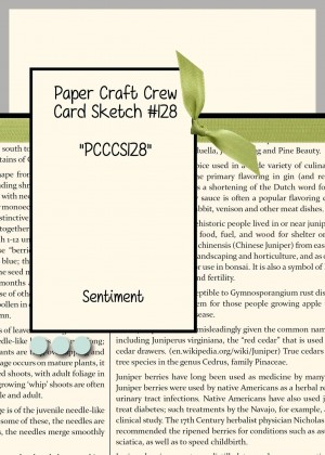 Paper Craft Crew Card Sketch 128