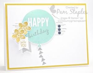 PCCCS129-Pam002