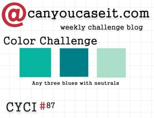 Can You Case It? Color Challenge  CYCI87