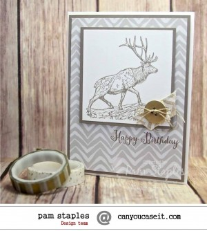 Card created by Pam Staples, Design Team Member of Can You Case It? #pamstaples #sunnygirlscraps #stampinup