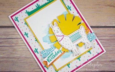 CARD: Birthday Fiesta celebrates PCCS#200