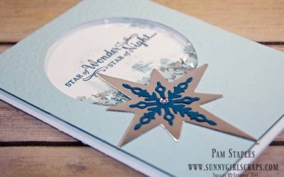 CYCI138 – Star of Light Shaker Card